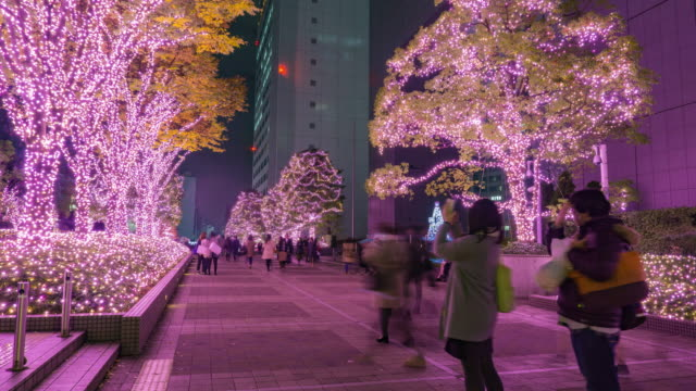 4K Timelapse: Shinjuku terras stad verlichting in Tokio, Japan