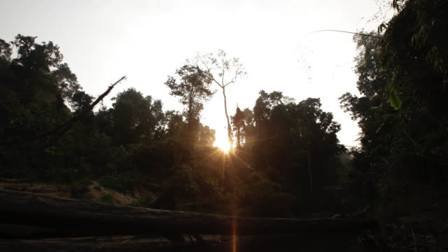 Timelapse sun rises over rainforest and river, Htamanthi, Myanmar