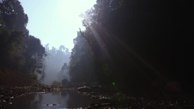 Timelapse sun rises over river and rainforest camp, Gwa, Myanmar