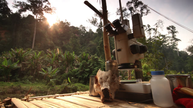Timelapse sun rises over scientific equipment in rainforest camp, Htamanthi, Myanmar