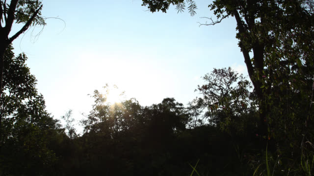 Timelapse sun sets over rainforest, Megatha, Myanmar