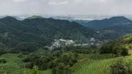 4K Time-lapse:Clouds over Longjing tea plantation in valley,Hangzhou,China