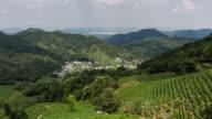 4K Time-lapse:Longjing village surrounded by tea plantation with Hangzhou skyline,China