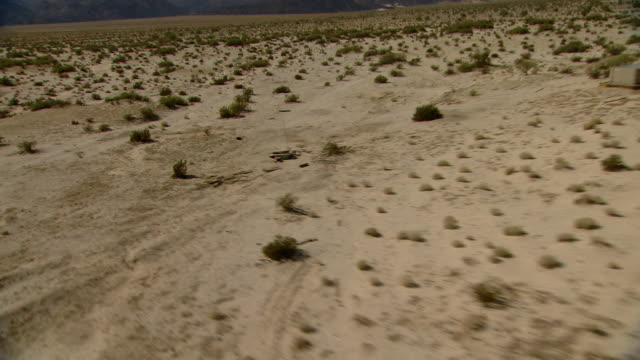 Tire tracks cut across Mexico's sparsely vegetated Baja California Desert.