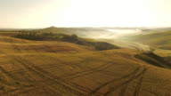 AERIAL Tire tracks in fields of wheat