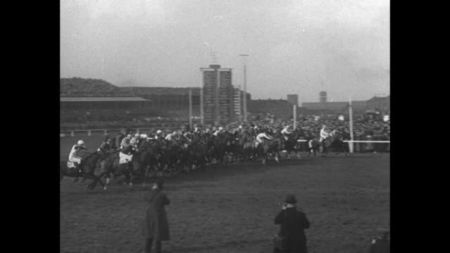 'Reynoldstown Repeats Grand National Win' / shot of crowd in stands at Aintree Racecourse / race horses led in circle around paddock / man walks...