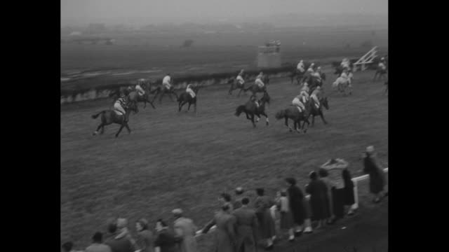 'The Grand National' superimposed over horses running / tilt down packed stadium / race begins / VS race with horses jumping hedges several stumble...