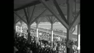 'Where Mexico Always Wins' / VS bettors' windows at racetrack with crowd of men waiting to place bets / horses parade to post / spectators in shaded...