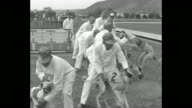 'Whippets Fast Also Foolish Agua Caliente Mex Stuffed rabbit puts speedy dogs on edge for big race' / MS trainers in white walk line of Whippet dogs...
