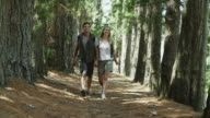 WS to MS of couple walking along forest path