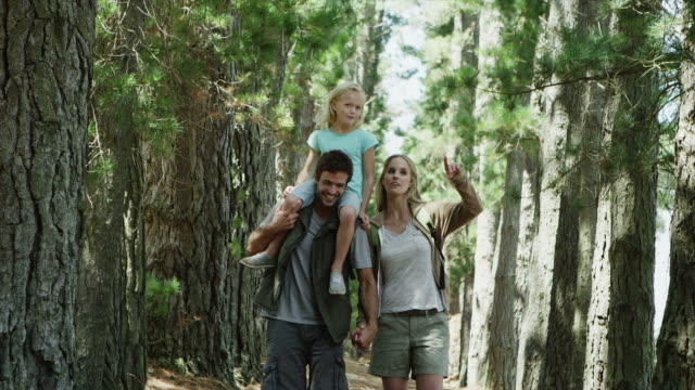 WS to CU of family walking along forest path