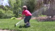 Toddler Boy Having a Great Time Playing with water Sprinkler