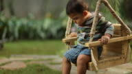 Toddler boy on tree swing