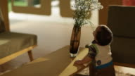 Toddler boy pulling a flower vase on coffee table