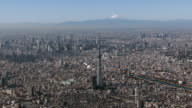 Tokyo skytree and m't Fuji Aerial view