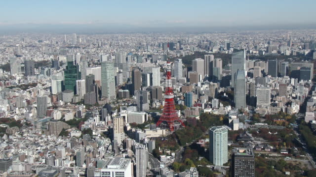 Tokyo tower and buildings Aerial view