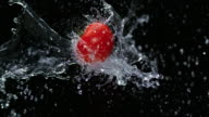SLO MO Tomato being splashed by water in the air on black background