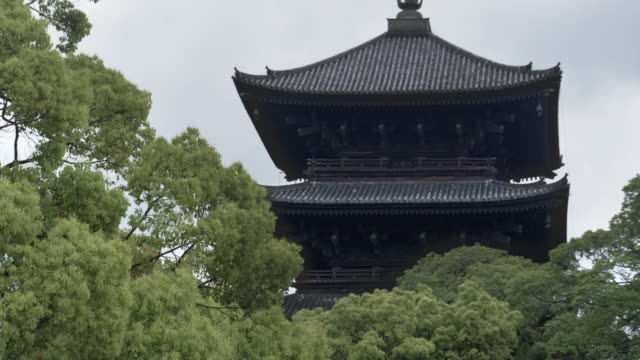 MS Top of five-story pagoda of To-ji temple with trees in foreground, Kyoto, Japan
