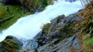 Top of Sahalie Falls green forest waterfall McKenzie River Valley Oregon 18
