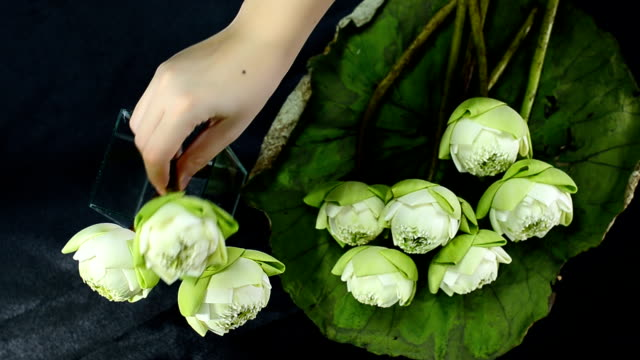 top view : arrange a lotus in a glass vase