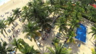 MS AERIAL Top View of Coconut trees with people enjoying in Playa Del Carmen beach / Playa DelCarmen, United States