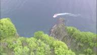 A tour boat glides along the scenic coast of the Shakotan Peninsula.