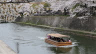 A tourist boat cruising over a water canal in Kyoto in the background colorful cherry blossom trees can be seen