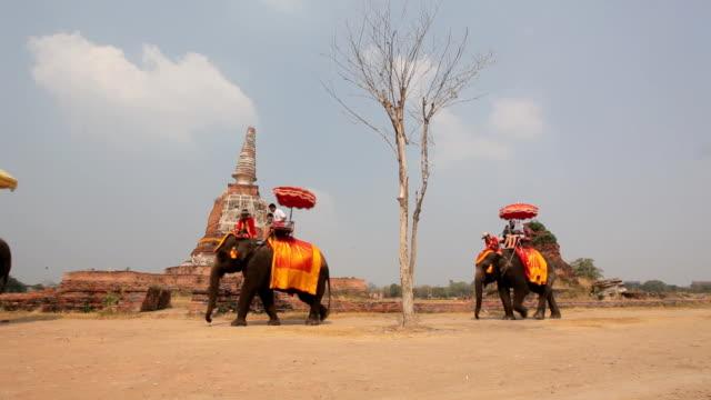 Reisegruppe reitet auf Elefanten und stupa in Ayutthaya in Thailand