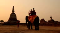 Tourist rides elephants and stupa at Ayutthaya in Thailand