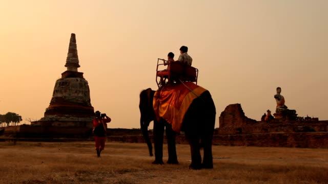 Tourist rides elephants and stupa at Ayutthaya in Thailand