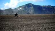 HD: Touristische Reitpferd am Mount Bromo Vulkan