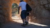 Tourists and hikers visit the Grand Canyon in Arizona on July 15 2015 Shots Wide shots of hikers walking down trails along the Grand Canyon A deer...