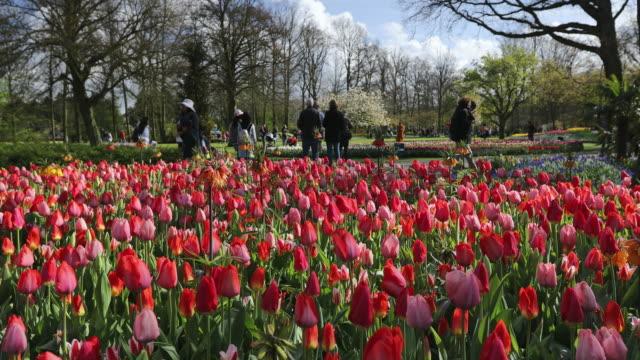 Tourists at Keukenhof Gardens, Lisse, South Holland, Netherlands, Europe