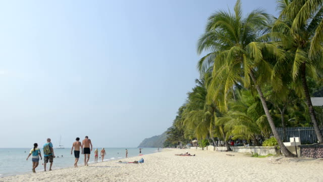 Tourists at sandy beach with palm trees