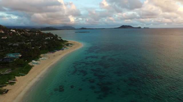 Tourists on Hawaii beach, aerial