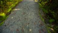 Toeristen lopen op voetpad op Lake Matheson, Nieuw-Zeeland