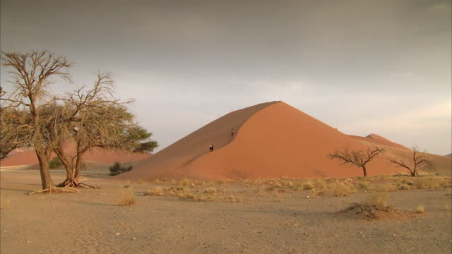 WS Tourists walking up dune to watch sunset over the Namib / Sossusvlei, Namibia