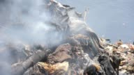 Toxic Smoke Rising From Heaps Of Garbage On The River Citarum in Indonesia