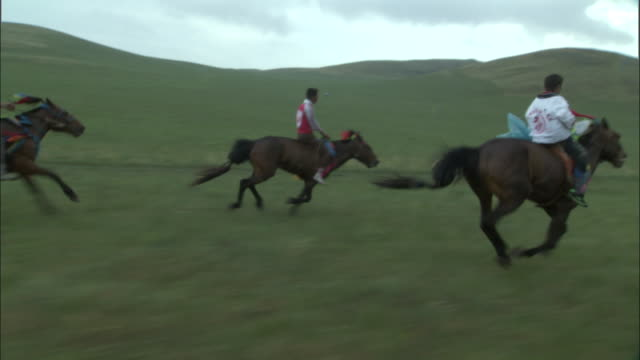 Track alongside racing horses at Naadam Horse Festival,