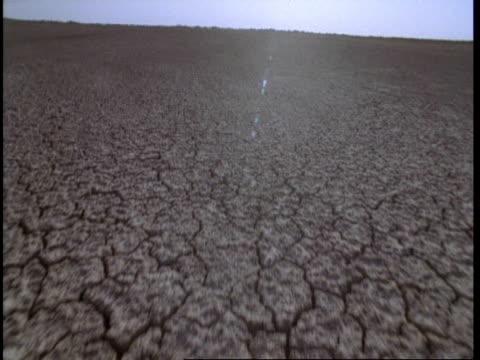 MS Track backwards over cracked desert landscape, Gujarat, India