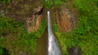 Track forward and tilt up over waterfall and rainforest, Kauai Available in HD.