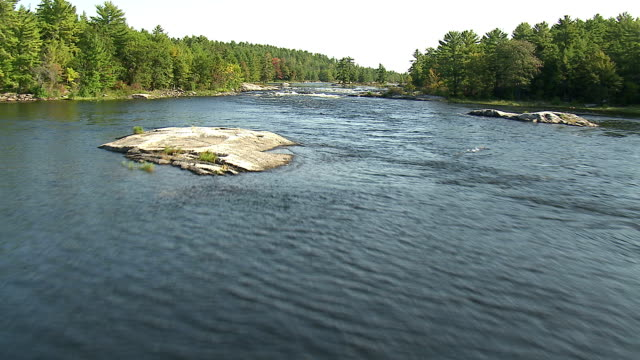 Track forward over a course of rapids in a river surrounded by a dense forest, northern Canada. Available in HD.