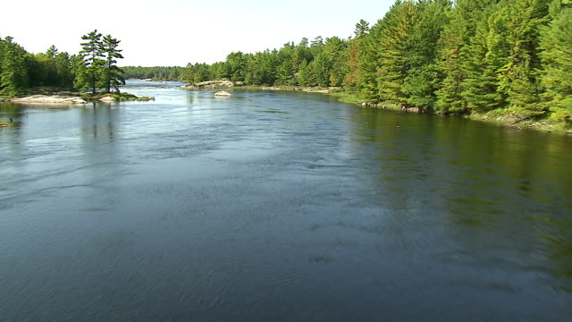 Track forward over a river and course of rapids surrounded by dense evergreen forest, northern Canada. Available in HD.