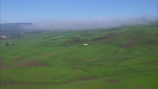 Track forward over green fields under blue sky, Napa Valley Available in HD.