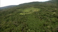 Track forward over rainforest and zoom in on clearing for coca harvest Available in HD.