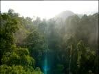 Track forward over rainforest canopy, Borneo