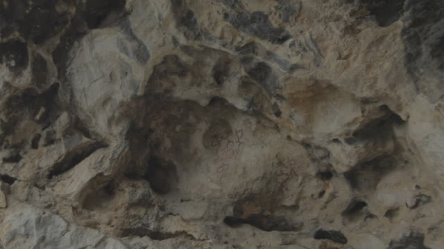 W/S track forward rock paintings of Jimena
