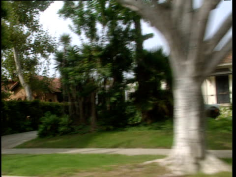 Track left from car along tree lined street past expensive looking houses Beverly Hills