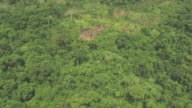 Track over deforested area of jungle.