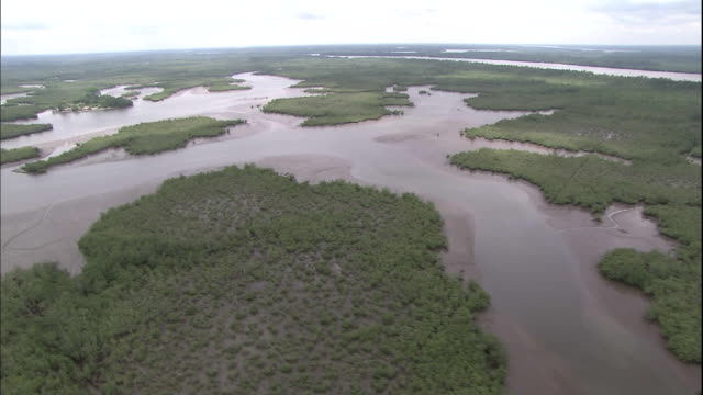 Track over Niger Delta, Nigeria, Aerial Shot
